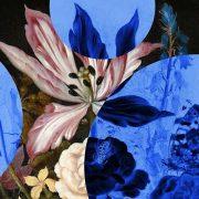 Η ευφυία της ευωδιάς: Πώς τα αρώματα εξηγούν τον κόσμο!