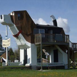 Το ξενοδοχείο? σκύλος βρίσκεται στο Αϊντάχο των ΗΠΑ