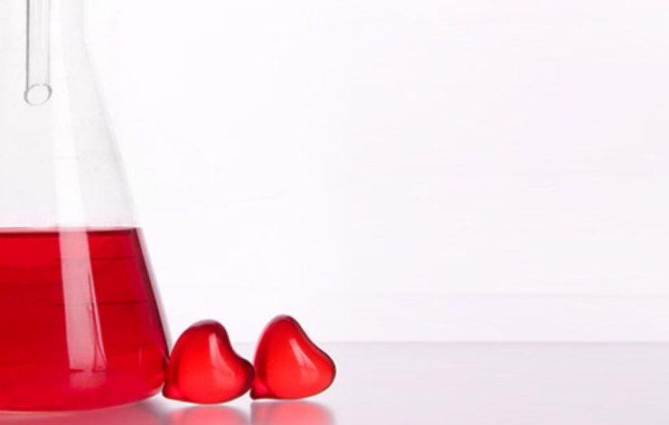 Η χημεία της καρδιάς μας