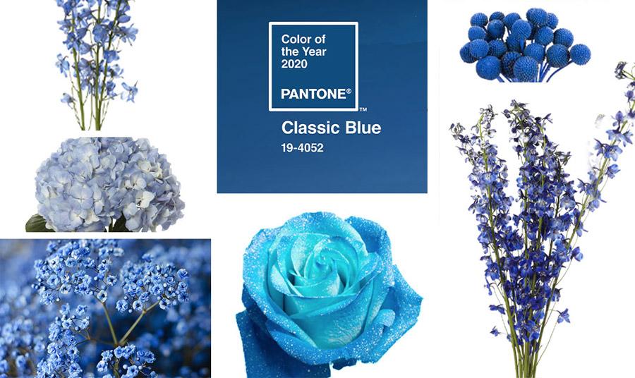 Ακόμη και τα λουλούδια «βάφονται» μπλε και θα είναι οι ανθοδέσμες που θα κυριαρχήσουν αυτή τη χρονιά!