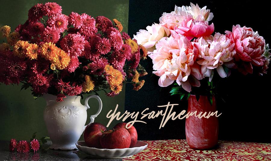 Χρυσάνθεμα: Τα «χρυσά» λουλούδια που συμβολίζουν την αισιοδοξία!