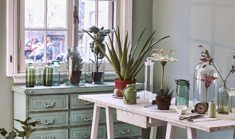 Άπλετος φυσικός φωτισμός, λιτά έπιπλα, φυσικά χρώματα αναδεικνύουν τον χώρο και την πεμπτουσία των φυτών
