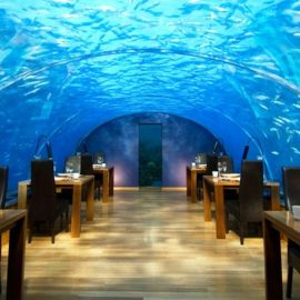 Ithaa Undersea Restaurant Rangali Island, Μαλδίβες