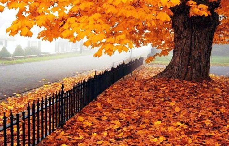 Γιατί το φθινόπωρο είναι τέλεια εποχή για ταξίδια!