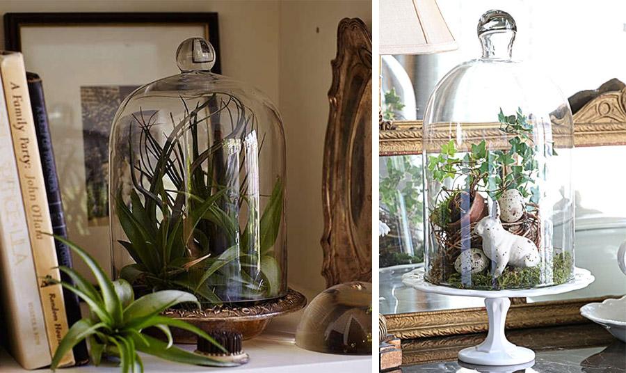 Επιλέξτε την καμπάνα, λαμβάνοντας υπόψη το ύψος και το πλάτος του φυτού για να μην εμποδίσετε την ανάπτυξή του // Μία σύνθεση με αβγουλάκια, λαγουδάκια και μικρά φυτά δημιουργούν μία ωραία ιδέα για πασχαλιάτικη διακόσμηση
