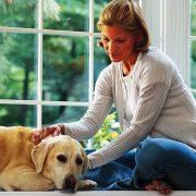 Αν αγαπάτε τους σκύλους, είστε έξω καρδιά, έχετε πολλές παρέες και προτιμάτε τις ρομαντικές κομεντί και τα δακρύβρεχτα δράματα..