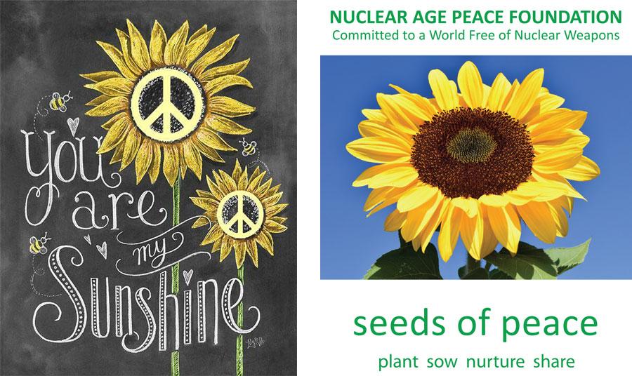 Αφίσα από τη χίπικη κουλτούρα και την υπέροχη δήλωση σε ελεύθερη μετάφραση: «Είσαι η ηλιαχτίδα μου!» // 'Όταν ο ηλίανθος γίνεται σύμβολο κατά της πυρηνικής ενέργειας