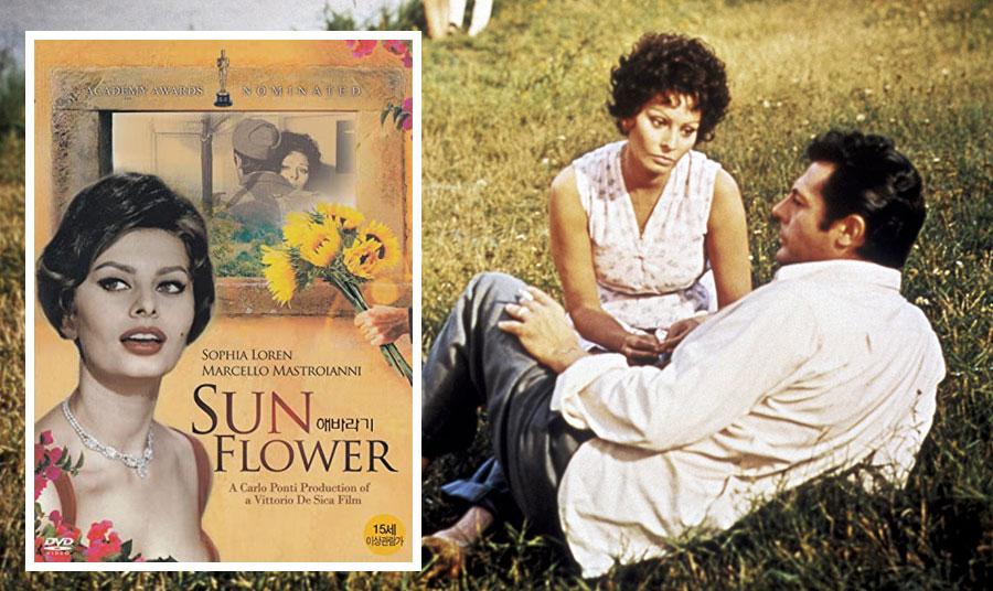 Αφίσα και σκηνή από την αριστουργιματική ταινία του 1970 με πρωταγωνιστές τον Μαρτσέλο Μαστρογιάννι και τη Σοφία Λόρεν «Το ηλιοτρόπιο»