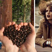 Το καφέ χρώμα και ο ρόλος του στην ψυχολογία μας