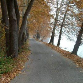 Η βόλτα δίπλα στη λίμνη χαρίζει πανέμορφες εικόνες