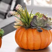 Φτιάξτε μία υπέροχη διακοσμητική φθινοπωρινή σύνθεση με κολοκύθα