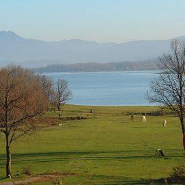 Στις όχθες της λίμνης μπορούμε να κάνουμε ιππασία και άλλες δραστηριότητες εναλλακτικού τουρισμού
