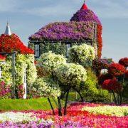 Dubai Miracle Garden: Ο κήπος των θαυμάτων!