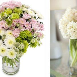 Χρυσάνθεμα, τα λουλούδια της φιλίας και της χαράς. Οι γεννημένες τον Νοέμβριο έχουν μεγάλες πιθανότητες να είναι πολύ καλές φίλες // Δεκέμβριος: Τα ταπεινά μανουσάκια με το χαρακτηριστικό τους άρωμα αντιπροσωπεύουν τη μετριοπάθεια, την πίστη και τον σεβασμό