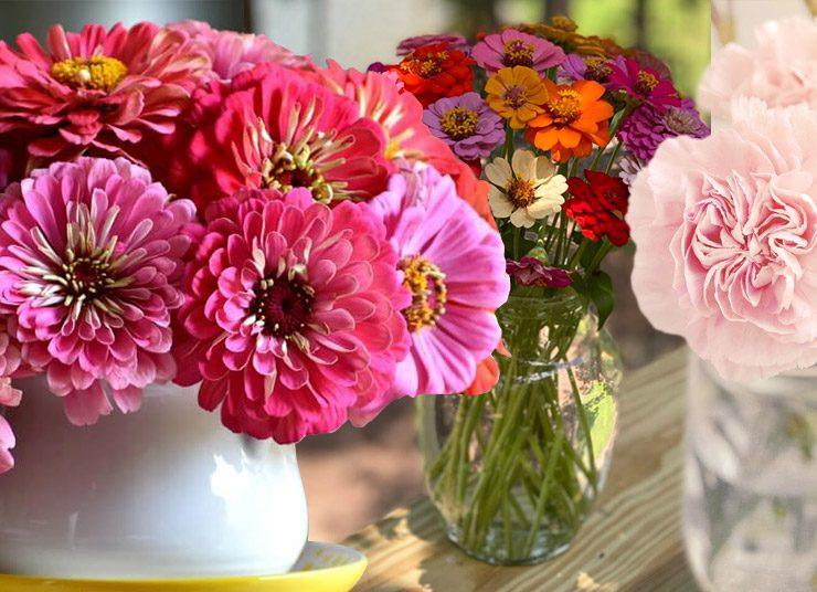 Πέντε λουλούδια που διαρκούν πολύ στα βάζα