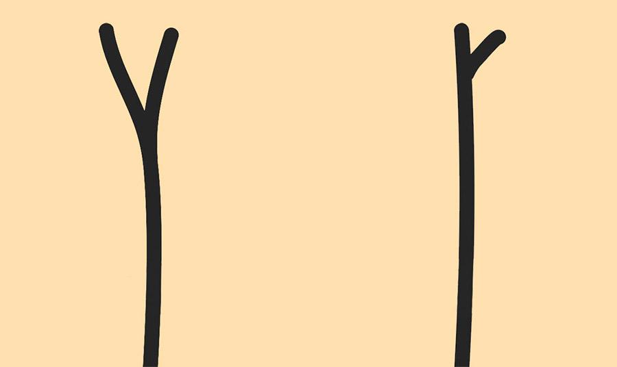 Θυμίζει ένα κεφαλαίο Υ και είναι ο πιο κοινός τύπος ψαλίδας. Αυτό σημαίνει ότι τα μαλλιά μας χρειάζονται τροφή για να ισορροπήσουν // Το αδιόρατο «σπάσιμο» είναι το μικρό ξαδελφάκι του βασικού διαχωρισμού. Χρειαζόμαστε άμεσα ενυδάτωση.