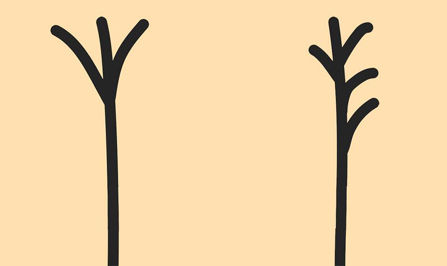 Το σχήμα μικρού πιρουνιού δεν είναι συνηθισμένο είδος ψαλίδας. Δηλώνει πως τα μαλλιά έχουν υποστεί σημαντική φθορά, όπως και οι ίνες των τριχών // Θυμίζει δέντρο με ανεμοδαρμένα κλαδιά! Παρατηρούνται πολλοί διαχωρισμοί στη μία πλευρά των ινών της τρίχας, συγκριτικά με την άλλη. Μεγάλη φθορά!