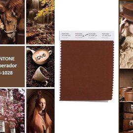 Το Brown Emperador 18-1028 είναι ένα σοκολατί κλασικό καφέ που μπορεί να δώσει απεριόριστο στιλ στην εσωτερική διακόσμηση του χώρου σας