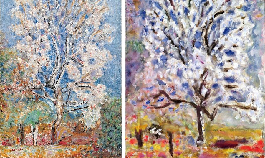 Ελαιογραφίες του Γάλλου ζωγράφου Pierre Bonnard Almond Tree in Blossom (Amandier en fleurs), 1946 και 1947. Τα έργα βρίσκονται στο Εθνικό Μουσείο Μοντέρνας Τέχνης, Centre Georges Pompidou, στο Παρίσι