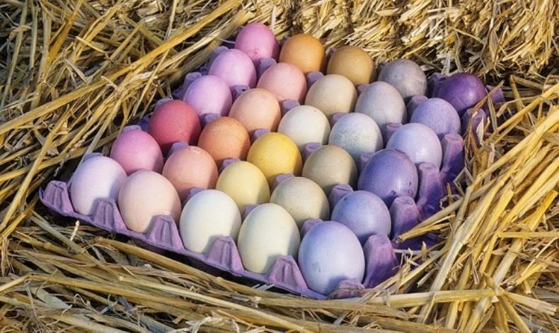 Βαμμένα... πολύχρωμα αβγά!