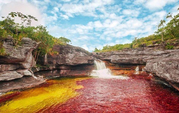 Τα ανεπανάληπτα χρώματα του ποταμού στην Κολομβία οφείλονται στο φυτό macarenia clavigera που αναπτύσσεται στα νερά του