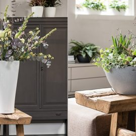 Φυσικά υλικά για τα έπιπλα και έντονη παρουσία του ακατέργαστου ξύλου συνδυάζονται υπέροχα με κάθε σύνθεση φυτών και λουλουδιών. Οι γλάστρες LECHUZA σε ουδέτερα χρώματα αλλά με εξαιρετικά σχήματα σας δίνουν ιδέες!