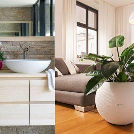 Η συχνά αδιάφορη διακόσμηση στο μπάνιο, μπορεί να πάρει μία πιο ενδιαφέρουσα χροιά με ένα ωραίο γλαστράκι και ένα φυτό // Οι σφαιρικές γλάστρες της LECHUZA με σατινέ ματ υφή προσφέρονται για μια ποικιλία φυτών