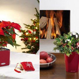 Σε εκπληκτικό κόκκινο χρώμα, οι γλάστρες της LECHUZA σε διάφορα σχήματα θα δώσουν νέα εμφάνιση στη γιορτινή διακόσμησή σας
