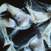 ΕΝ ΟΝ, 2009, χορός Yumiko Yoshioka (Φωτογραφία: Χρόνης Γιαννόπουλος)