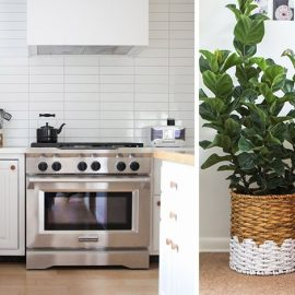 Τα αρωματικά χώρου και τα φυτά ενισχύουν τη φρεσκάδα και χαρίζουν ανανεωμένη ατμόσφαιρα σε κάθε δωμάτιο