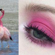Ροζ φλαμίνγκο στα μάτια μας!