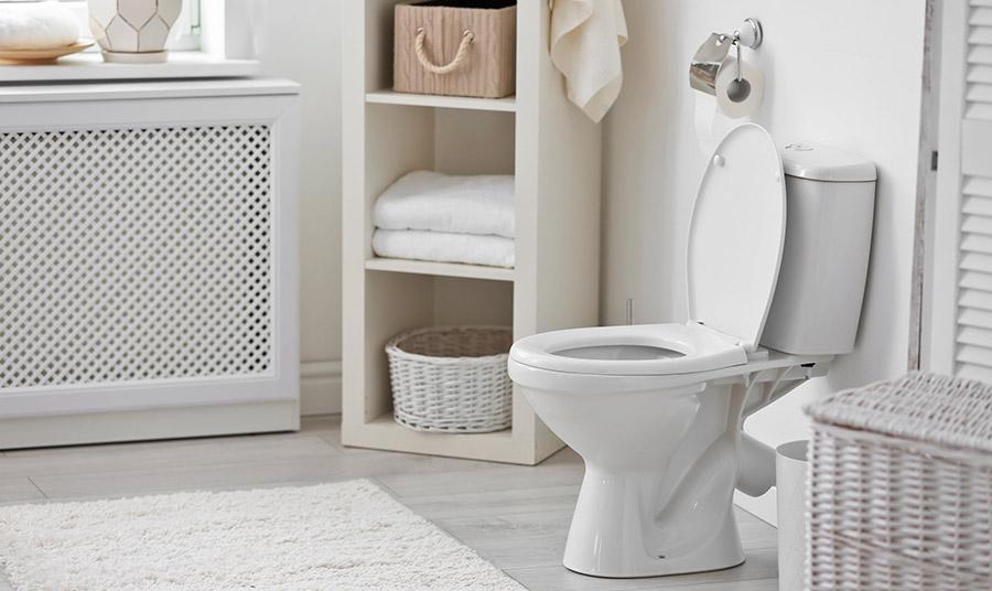 Τι δεν πρέπει να ρίχνουμε ποτέ στη λεκάνη της τουαλέτας μας