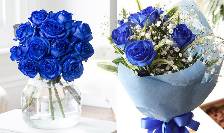Μπλε τριαντάφυλλα