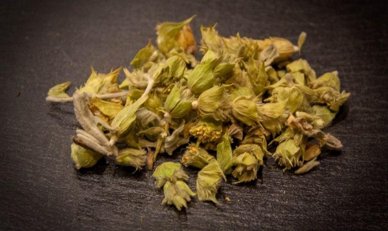 Το τσάι του βουνού ή αλλιώς σιδερίτης του Διοσκουρίδη, λέγεται ότι πήρε το όνομά του από την ελληνική λέξη «σίδηρος» χάρη στην επουλωτική δράση του φυτού έναντι πληγών που προκαλούνταν από σιδερένια όπλα