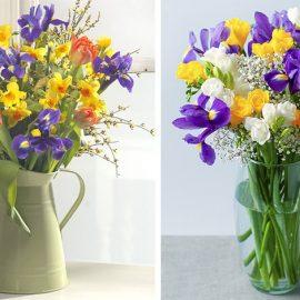 Κίτρινα λουλούδια και μοβ ίριδες! Συνδυάστε τα δύο χρώματα της φετινής μόδας και στα βάζα σας!