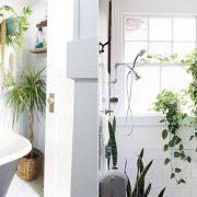 Μπορείτε να βάλετε φυτά σε διαφορετικές γωνιές, δημιουργώντας ένα τροπικό στιλ // Το περβάζι του παραθύρου είναι ιδανικό σημείο