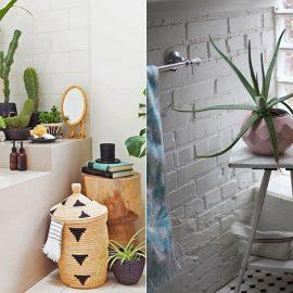 Τοποθετήστε φυτά στην μπανιέρα σας ανάλογα με τον χώρο που διαθέτει // Βάλτε μία όμορφη γλάστρα σε ένα σκαμνάκι ή τραπεζάκι