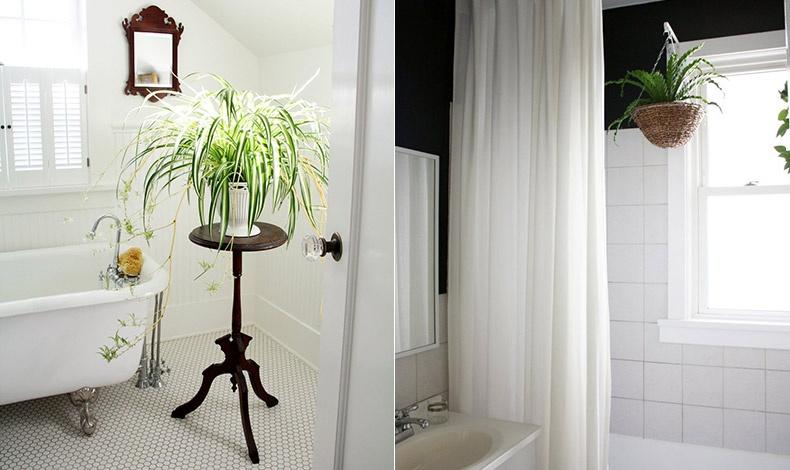 Η κρεμαστή γλάστρα στην ντουσιέρα ή στην μπανιέρα είναι μία ακόμη λύση // Κομψότητα στο μπάνιο με ένα ωραίο τραπεζάκι στολισμένο με φυτό